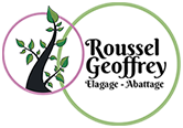 MONSIEUR GEOFFREY ROUSSEL